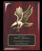 Click this Image to visit the Eagle Plaques category.