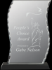 Click this Image to visit the Glass Awards category.
