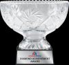 Click this Image to visit the Vase Award Trophy Cups category.